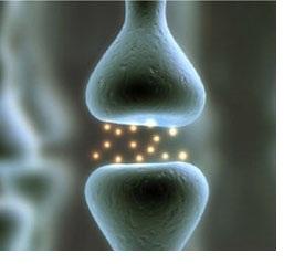Duidelijkheid over fibromyalgie en wat het NIET is
