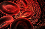 Aambeien bloed