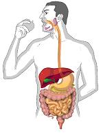 gastritis symptomen