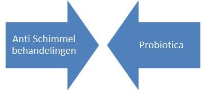 anti schimmel & probiotica