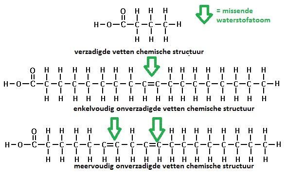 chemische structuur vetten