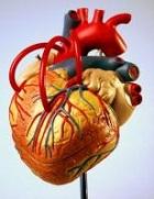 te hoog cholesterol gevolgen